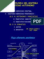 3.-CLASE N°3  SISTEMA  NERVIOSO AUTONOMO
