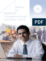NEBOSH iDip July 2012 Unit IA Exam Paper