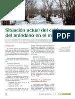 Situación Actual Del Cultivo Del Arándano