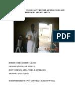 The Internship Progressive Report at Mixa Foods and Beverages Kisumu Kenya posted by alex