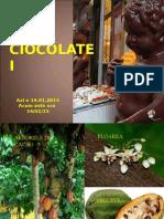 Raiul Ciocolatei