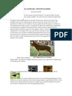 evolucion_pastor_aleman.pdf