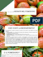 la biodiversit nel pomodoro - expo 2015