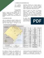 Rio Grande Do Sul - População