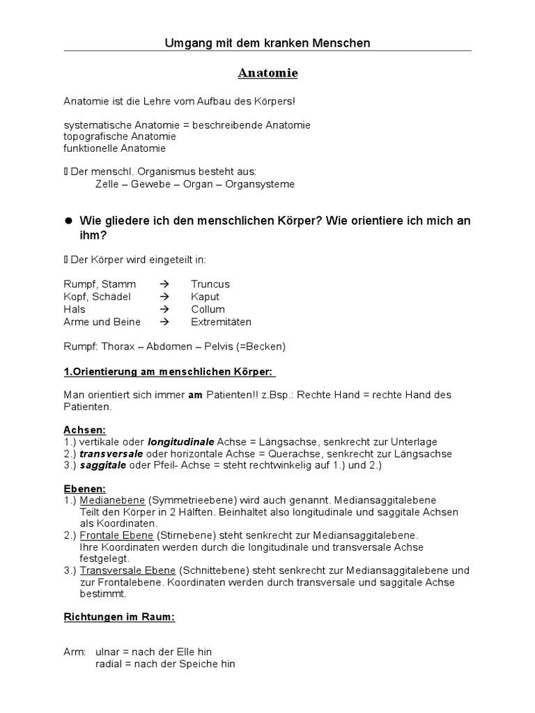 Großartig Anatomie Und Physiologie Der Ebene 3 Ideen - Anatomie Von ...