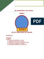PLAN DE NEGOCIOS AREQUIPA 2 - AYAKU SAC (OFICIAL).docx