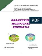 Branzeturi modificate enzimatic