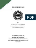 ileus_obs