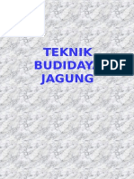 Teknik Budidaya Jagung.ppt