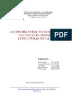 accion del fuego.pdf