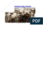 Livestock Business Boosts