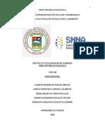 Final-proyecto.docx