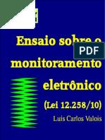 Ensaio Sobre o Monitoramento Eletrônico