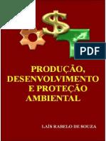 Produção Desenvolvimento e Proteção Ambiental 1