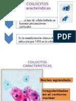 COLOICITO citología