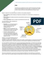 entenderlaciencia.blogspot.com-Las_rocas_sedimentarias_petroleo.pdf