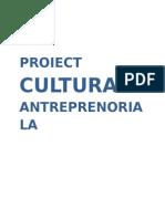 Proiect Cultura Antreprenoriala