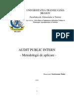 Audit Public Intern - Metodologii de Aplicare
