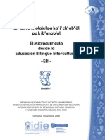 El Microcurrículo de LA EBI