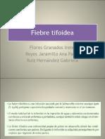 Fiebre tifoidea.pdf