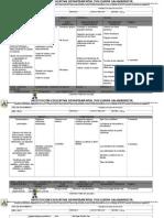 PLAN CURRICULAR SOCIALES 2013.doc