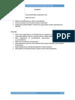 PAG-InSO Actividad 1