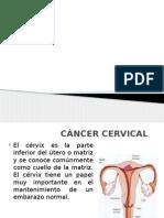 cancer cérvix.pptx