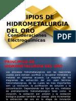 Principios de Hidrometalurgia Del Oro.pptx