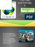 Proy Cultura Sustentable Grupo 5