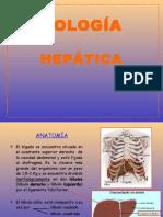 Fisiología Hepática