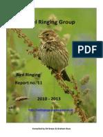 IRG Report 2010-2013