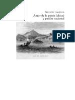 SCHMIDT- WELLE Friedhelm- Regionalismo Abstracto y Representación Simbólica de La Nación 2012 (L)