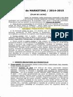 proiect de marketing.pdf