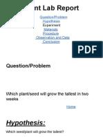 plant lab report  1