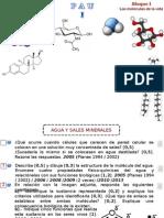 PAU-01-Las Moléculas de La Vida
