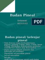 Badan Pineal