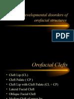 developmentaldisturbances12-131126081107-phpapp02