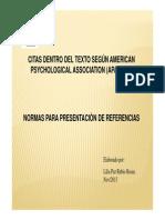 citas y normas de presentacion de referencias  segun apa 2013