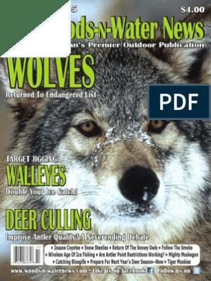 02 15 Gray Wolf Fishing Rod