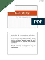 Epitelio_Glandular2013.pdf