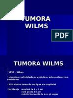 Tumora Wilms chir ped