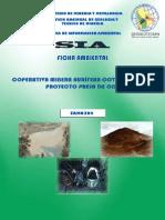 ficha ambiental colas.pdf