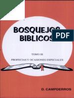 Bosquejos Biblicos Vol 3