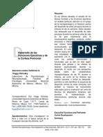 Desarrollo de Las FE y CPF