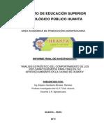 investigacion RSD Huanta