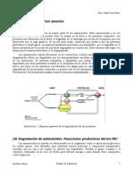 Bioquimica II Primer Parcial