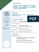 Curriculum Vitae Modelo3a Azul
