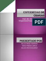 8 ENFERMEDAD DE CHAGAS.ppt