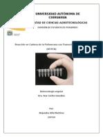 PCR_RT