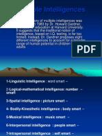 24456 Multiple Intelligences